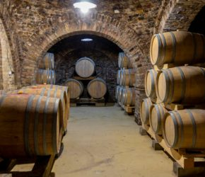 wine cellar with wooden barrels, Szekszard, Southern Transdanubia, Hungary