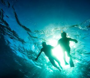 Silhouette of senior couple swimming together in tropical sea - Snorkeling tour in exotic scenarios - Concept of active elderly and fun around the world - Soft focus due to backlight and water density